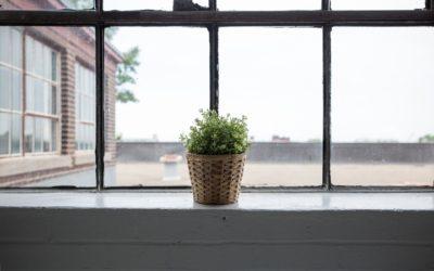 Jak wybrać okna do mieszkania i domu. Zagadnienia, o których warto wiedzieć.