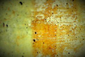 pleśń grzyb brud na ścianie