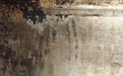 Jak pozbyć się grzyba ze ściany? Praktyczne wskazówki