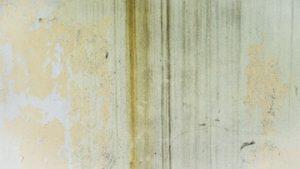 plamy na ścianie czyszczenie