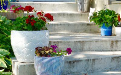 Betonowe donice ogrodowe. Jak ich użyć w aranżacjach