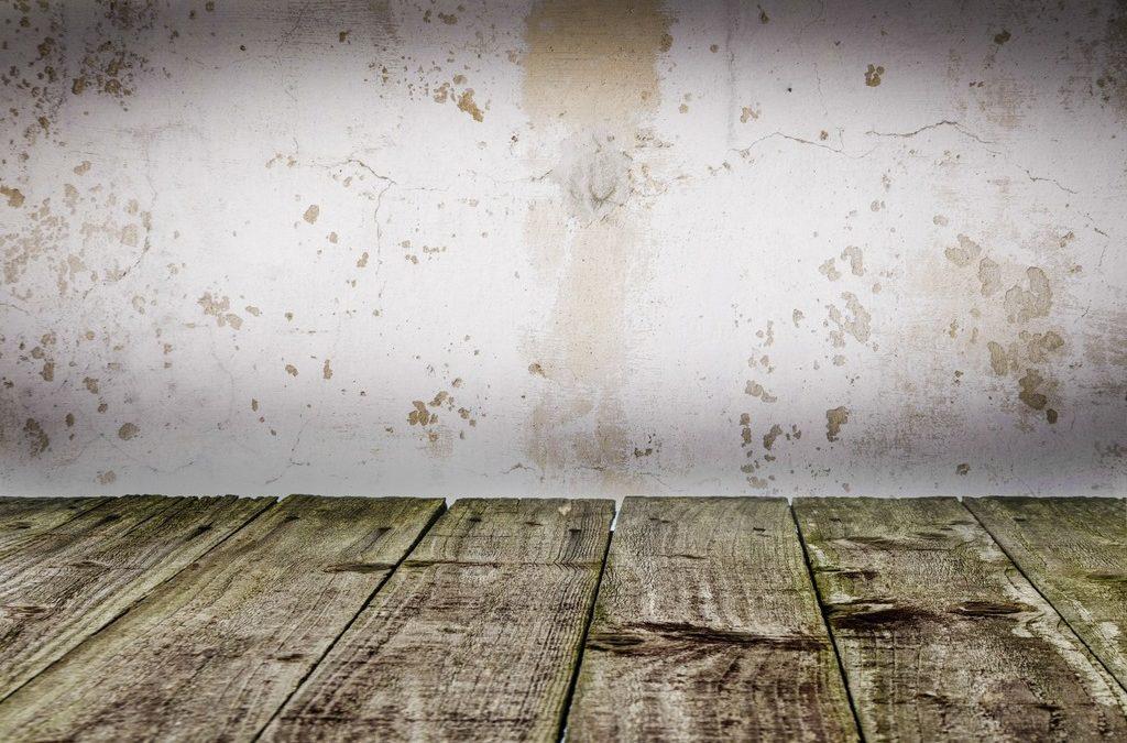 Beton i drewno w aranżacjach. Jak wykorzystać je w mieszkaniu?