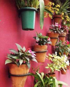 ogródek na ścianie w mieszkaniu